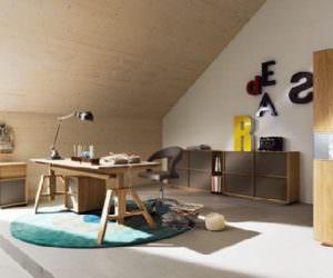 Çalışma odası mobilya ve dekorasyon fikirleri
