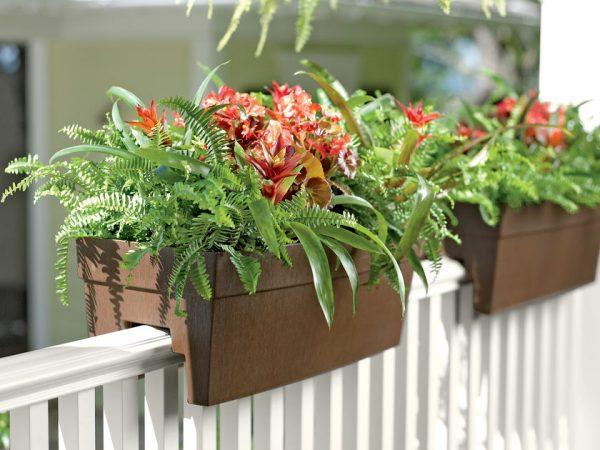 Evinizin içinde bakacağınız bitkiler ve saksı modelleri 32