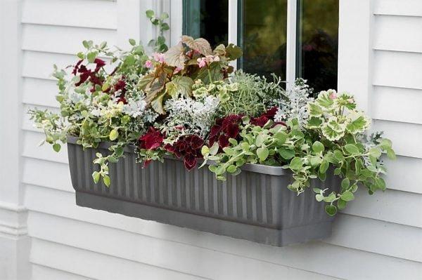 Evinizin içinde bakacağınız bitkiler ve saksı modelleri 25
