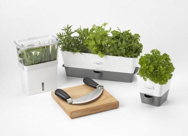 Evinizin içinde bakacağınız bitkiler ve saksı modelleri 26