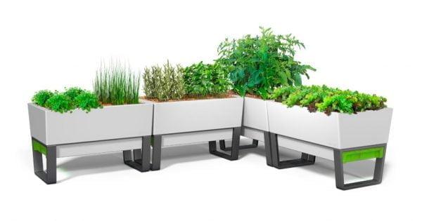 Evinizin içinde bakacağınız bitkiler ve saksı modelleri 27
