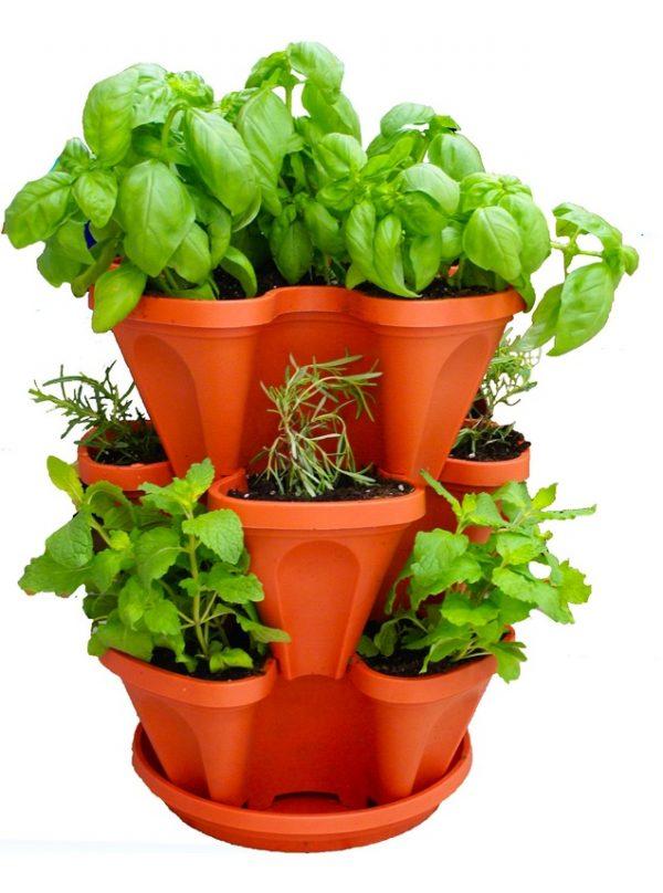Evinizin içinde bakacağınız bitkiler ve saksı modelleri 29